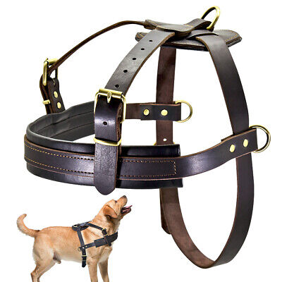 Real Leather Training Large Dog Harness German Shepherd Weight Pulling Harness