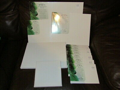 artists canvases 12 assorted