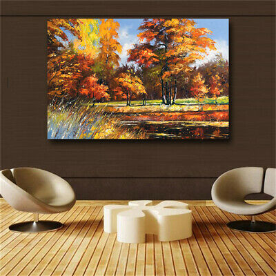 Abstract Beautiful Scenery HD print on canvas huge wall picture (31x47)