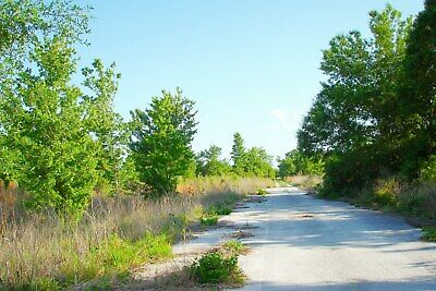 1/3 Acre Land in Florida, Between Orlando & Tampa, FL Lot