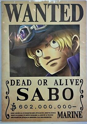 One Piece Wanted Poster Zoro News Official Mugiwara Store Brand New F S 41 99 Picclick