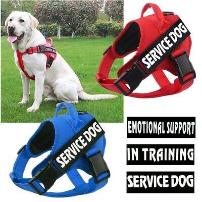 No-pull Dog Harness Pet Adjustable Service Dog Vest & Patch for Small Large Dogs