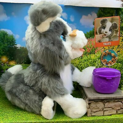 FurReal Friends Ricky Loves to do tricks 100+ sounds and motions Hasbro NIB