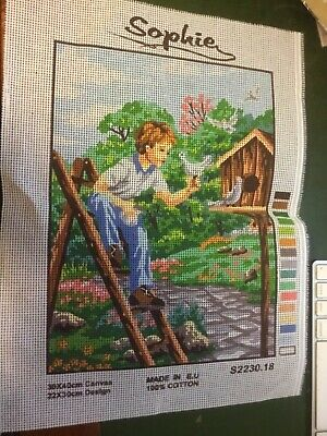 Sophie Tapestry Canvas ONLY. -  A boy holding a pigeon.