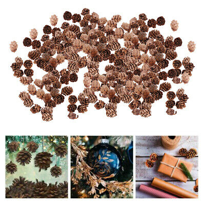 300pcs Natural Real Pine Cone Dried Pineal Nut For DIY Your Own Xmas Garland