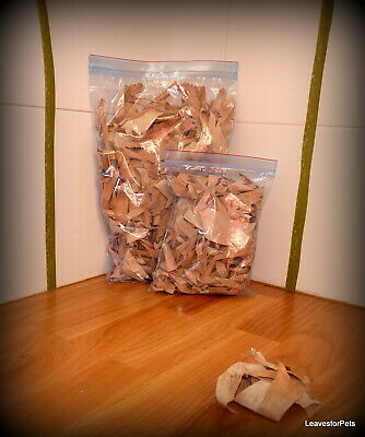 Dried Banana Leaves for Bioactive, Isopods and millipedes