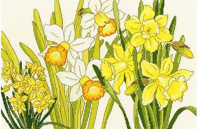 Bothy Threads Cross Stitch Kit - Daffodil Blooms
