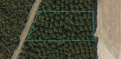 5 Acres Land Deeply Discounted in Sunny Madison Florida