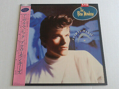 Blow Monkeys - Animal Magic Japan promo LP pressing EX to NM OBI Dr Robert #2