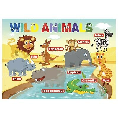 Wild Animals Poster First Learning Educational Charts Toddler Kids Boy Children