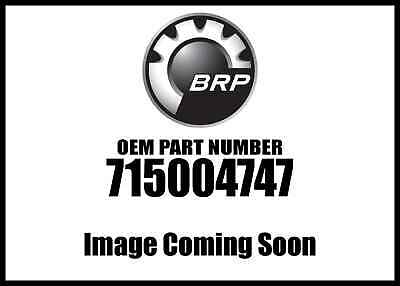 Can-Am Heated Grips /& Throttle Lever P//N 715003250