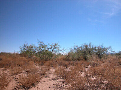 0.33 +/- Acre Investment Property Located 3 Hours from Phoenix with Great Access