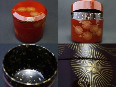 Japanese Lacquer Wooden Tea caddy Larch design in makie O-Fubuki Natsume (1205)