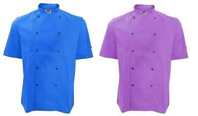 Dennys Dd56 Coloured Short Sleeve Chef Jacket Chefs Royal Purple