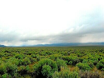 Rare 10 Acre Elko Nevada Ranch 5 Star Setting!  Near Utah! Cash Sale No Reserve!