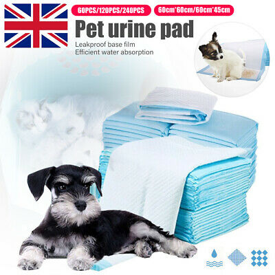 240 Large Puppy Training Trainer Pads Toilet Pee Wee Mats Dog Cat 60X60 Cm Pet