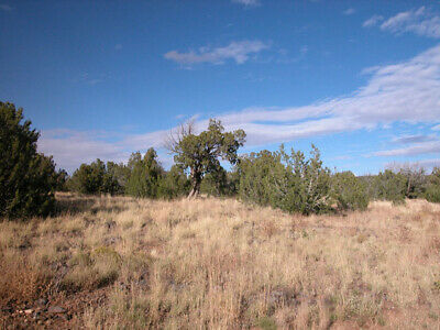 1.25 +/- Acre INVESTMENT property in UPCOMING Sub 1.5 Hours to Flagstaff, AZ!