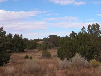 1.25 +/- Acre INVESTMENT Property 3.5 Hours From Phoenix with ROAD ACCESS!
