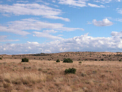 1.25 +/-Acre Investment Lot surrounded by mountains 1.5-Hours from Flagstaff, AZ