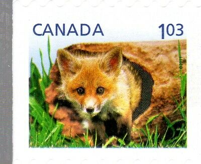 2011 Baby Wildlife Defins. From Bkt#441, Uc#2430 $1.03, U.s. Rate, Mnh