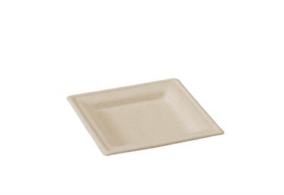 """Brown Sugarcane Square Appetizer Plate Case of 500, PacknWood -  Disposable 6.3"""""""