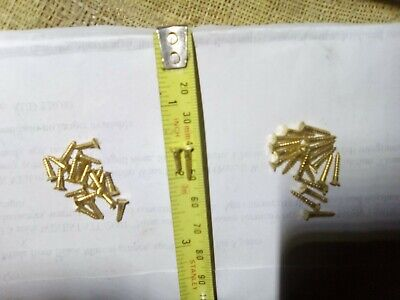 small brass screws, slot headed, 20 each at 8 mm and 12 mm