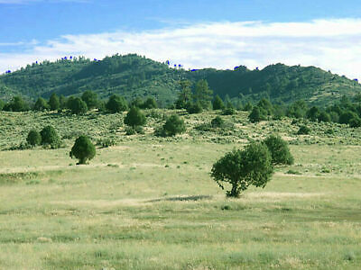 5.00 +/- Acre Ranchette 25 miles from Albuquerque, NM. Short to long term invest