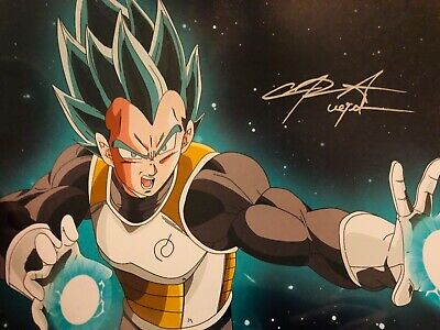 Chris Sabat Signed Autographed Photo Dragon Ball Z Vegeta JSA COA