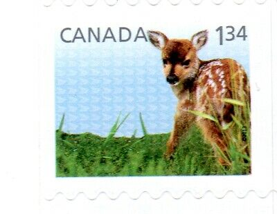 2013 Baby Wildlife Defins. From Bkt#519, Uc#2609 $1.34, Oversized Rate, Mnh