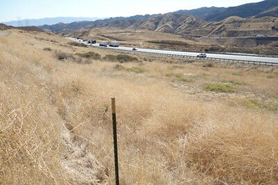 Just North of Santa Clarita .81 Acre Lot ON THE 5 FREEWAY South!  Los Angeles CA