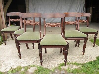 Set of six William IV mahogany dining chairs (ref 771)