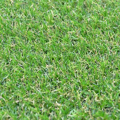 Thick Green Synthetic Camellia Artificial Grass 20mm Fake Garden Lawn 2-4m Width