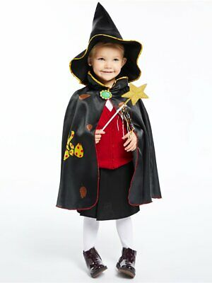 Childs Room On The Broom Fancy Dress Costume Witches Kit Book Day Halloween Girl