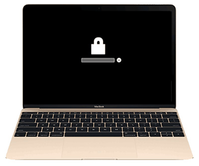 Unlock any MacBook iMac Retina EFI Password iCloud Unlock Service with Warranty