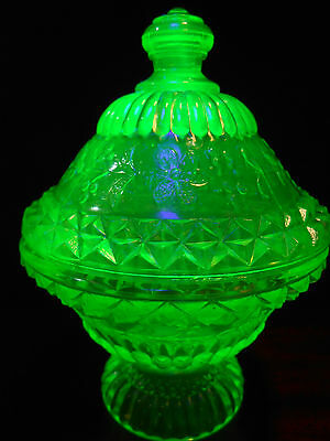 Green Vaseline glass wildflower pattern Covered Candy dish / butter uranium bowl