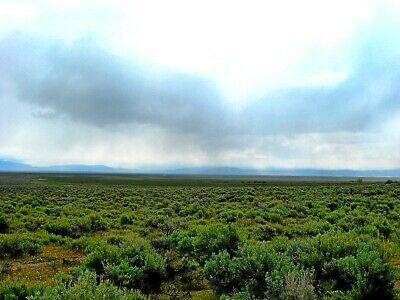 Rare 160 Acre Elko Nevada Ranch With A Creek! We Finance At 0% Int W $995 Down!