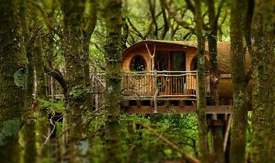 LIVING ROOM TREE HOUSE EXPERIENCE HOLIDAY FOR 2; Machynlleth, Powys; RRP £379