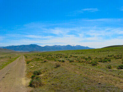 Rare 42 Acre Nevada Ranch! Ez Access & Amazing Views!   Cash Sale!   No Reserve!