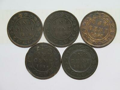 Canada Large Cent 1859 Victoria Type (5) Low Grade Damaged World Coin Lot 🌈⭐