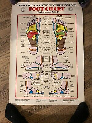 1983 International Institute of Reflexology Charts Posters Hand and Foot 31 x 22