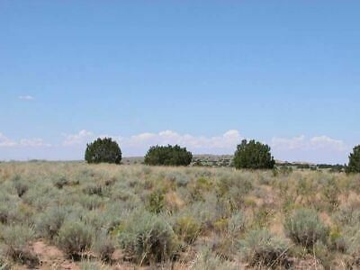1.14+/- Acre Gorgeous Investment Property with great ACCESS in Southern, AZ!