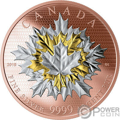 MAPLE LEAVES IN MOTION 5 Oz Silver Coin 50$ Canada 2019 COA #1
