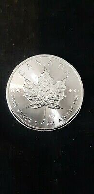 2020 1 oz Canadian Silver Maple Leaf Coin 1 Troy Ounce of 9999 Fine Silver BU