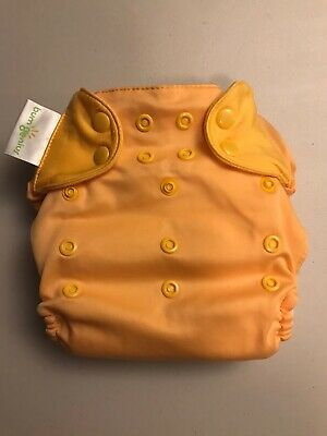 BumGenius Cloth Diaper All In One Clementine