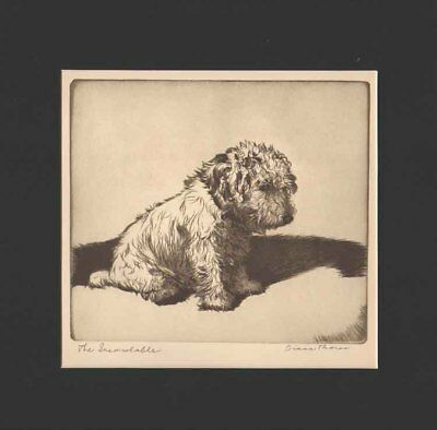 Sealyham Terrier Dog Print THE INCONSOLABLE 1935 / Diana Thorne  Black Mat 12X12