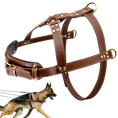 Real Leather Dog Weight Pulling Harness Large Breed Training Pitbull Heavy Duty