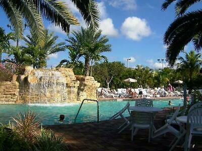 Vacation Village Weston Resort Fl Timeshare 2 Bedrooms Week 32 Free Usage & $500