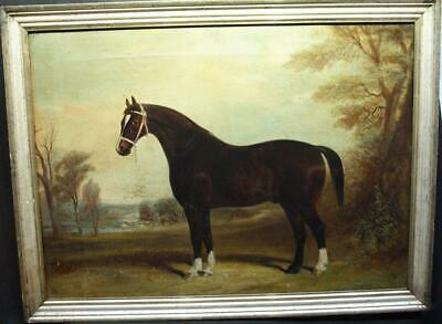 c1861 YORKSHIRE HACKNEY HORSE PORTRAIT OF CHARLEY OVERTON Antique Oil Painting