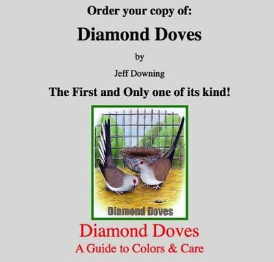 DIAMOND DOVE BOOK - DIAMOND DOVES A Guide to Colors INTERNATIONAL PURHCASES