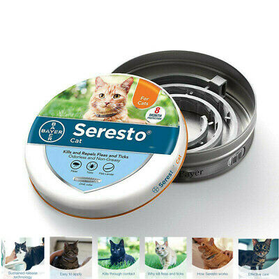 Bayer Seresto Cat 8 Month Protection Against Fleas and Ticks One Collar New